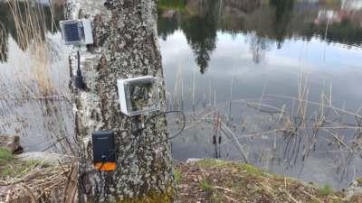 15 Watt Solarpanel und Montage am Baum